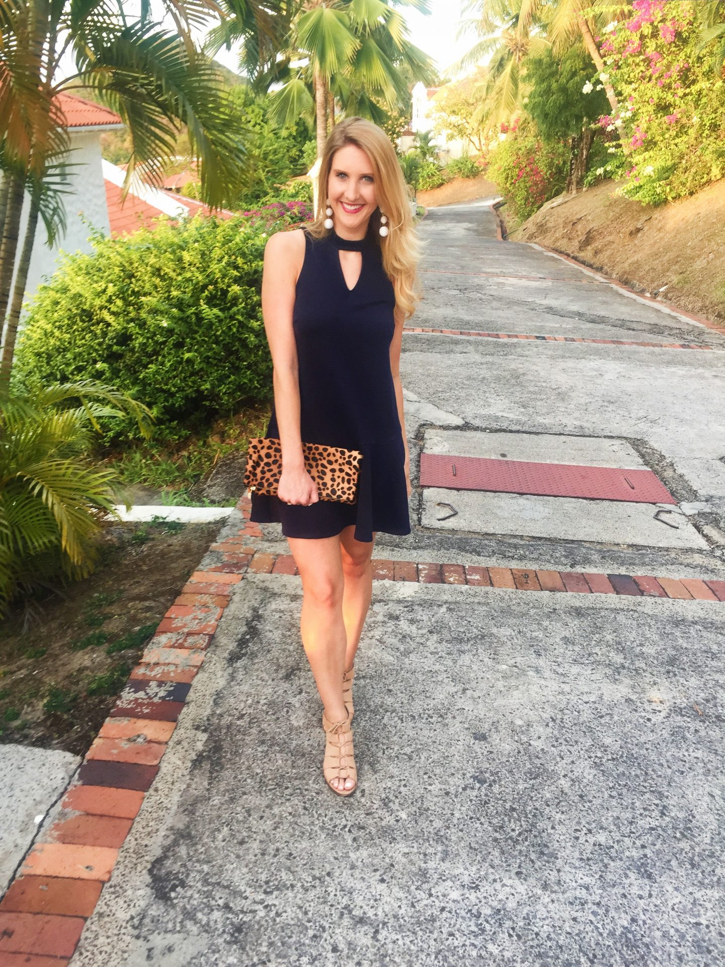 Navy  Dress with Leopard Clutch